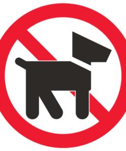 Запрещающий знак Выгул собак запрещен