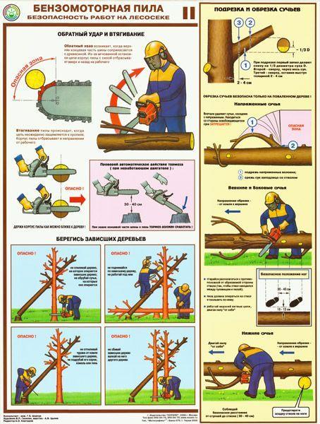 Комплект плакатов Бензомоторная пила. Безопасность работ на лесосеке