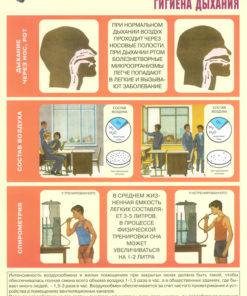 Комплект плакатов Личная гигиена