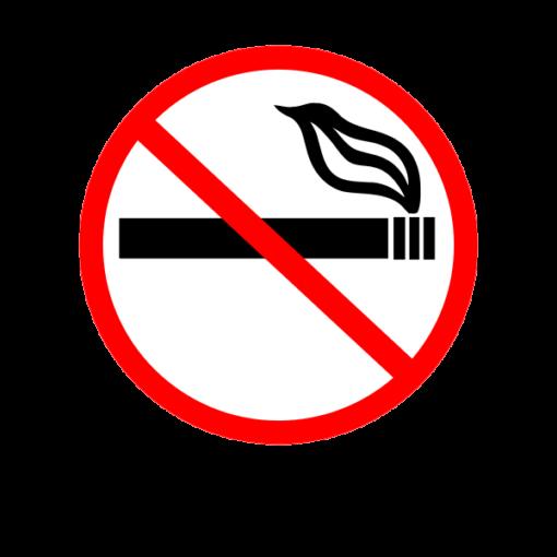 Наклейка No smoking 6